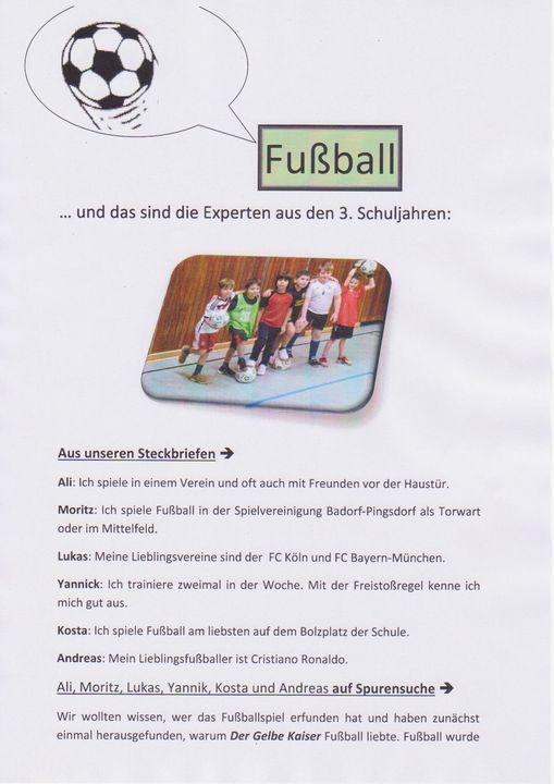 Fussball Experten